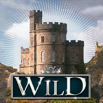 Wild symbol from online casino game Musketeer Slot