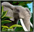 Picture from online slot game The Jungle II