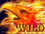 Simbol wild în jocul de aparate online Arising Phoenix