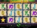 Burning Stars online slot machine for fun