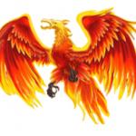 Wild symbol from online slot casino game Fenix Play 27