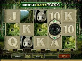 Untamed Giant Panda no deposit