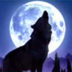 Wild symbol from casino game Wolf Moon