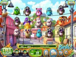 Picture from slot game Birds! no deposit