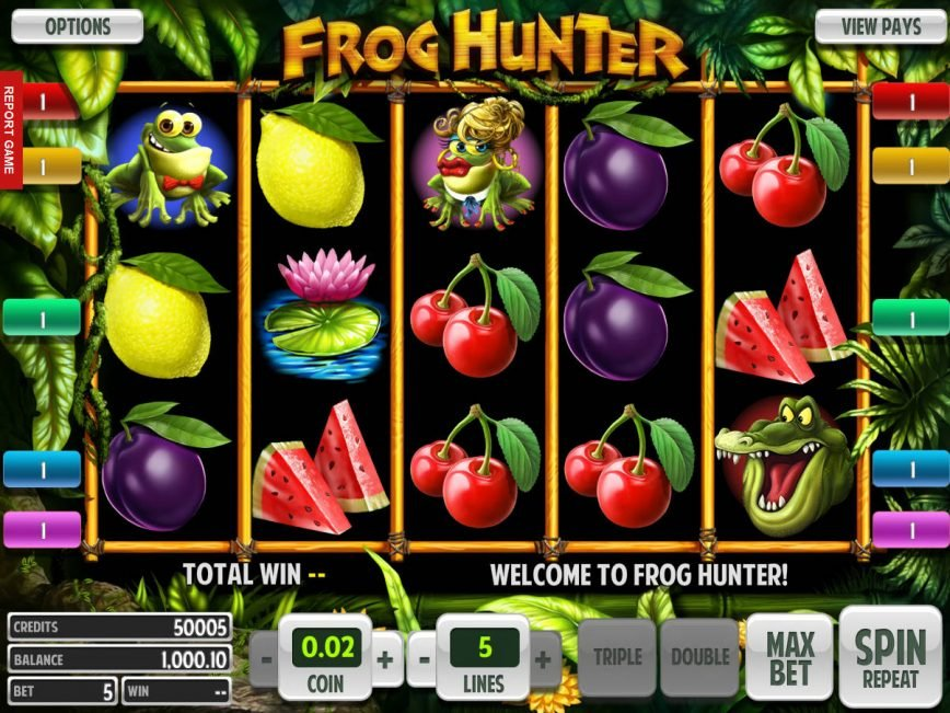 No download game Frog Hunter for free