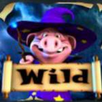 Simbol wild în jocul de păcănele Harry Trotter the Pig Wizard