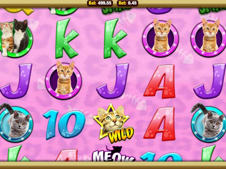 Picture from online free slot Meow Money