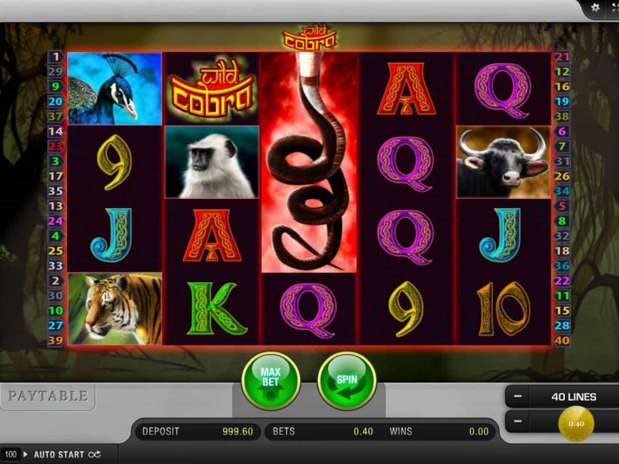 Play online slot Wild Cobra no deposit