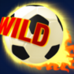 Wild symbol from online free slot Football Fans