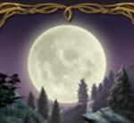 Scatter în jocul de aparate gratis online Night Wolves
