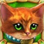 Wild/Scatter în jocul de aparate Kitty Twins