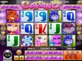 Play no deposit game Catsino for free