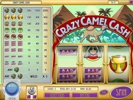 Crazy Camel Crash slot by Rival Gaming