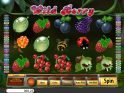 Picture of casino slot game Wild Berry