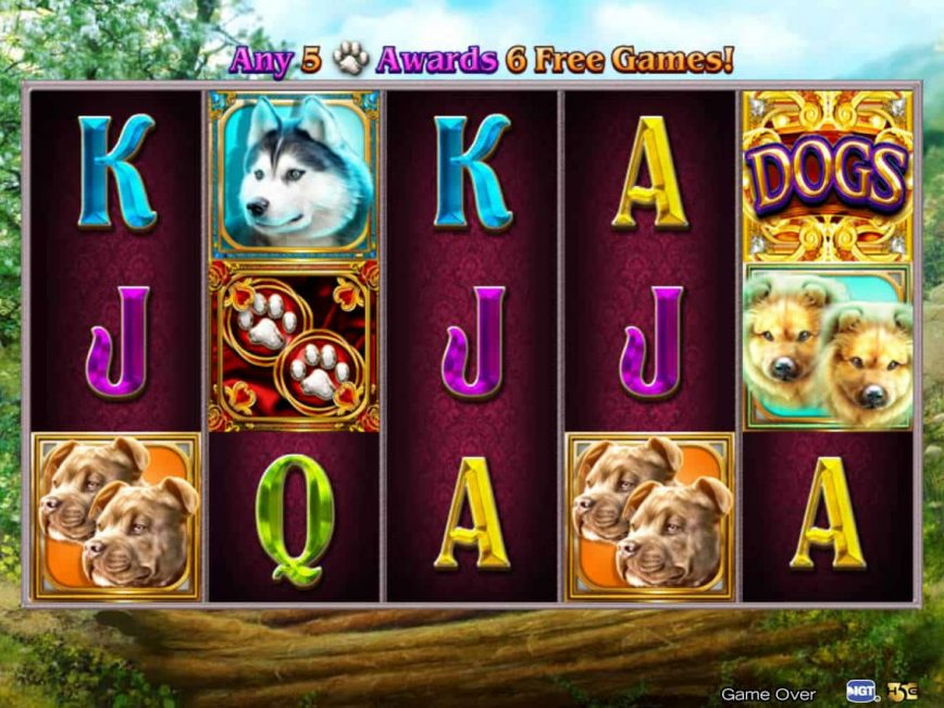 Dogs slot machine with no deposit