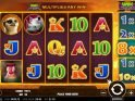 A picture of the online free slot Hot Safari