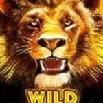 Wild-Symbol des kostenlosen Automatenspiels Hot Safari