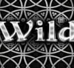 Wild symbol of Silk and Steel online slot