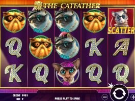 Slot machine The Catfather