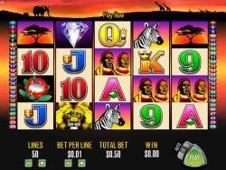 Win on online slot machine 50 Lions