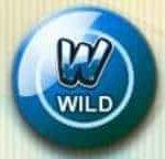 Wild-Symbol des Online-Spielautomaten Reely Bingo