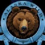 Simbol wild în jocul de aparate online Alaska Wild