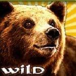 Simbol wild - Bavarian Forest joc cu aparate fără depunere