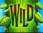 Wild symbol of Giant's Gold