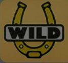 Wild symbol - Lucky Streak casino game