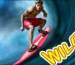 Symbol Wilda z automatu Aloha Party