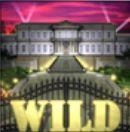 Wild-Symbol des Fast Money Casino Automatenspiels