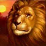 Wild symbol of Savanna´s Life online game