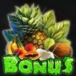Bonus symbol - Happy Jungle casino slot machine for free
