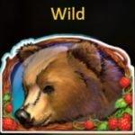 Wild symbol of Taiga slot machine