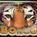 Bonus symbol - Taiga free slot game