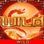 Wild symbol of casino slot machine Dragon Princess