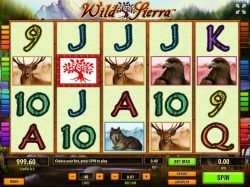 Free slot machine Wild Sierra