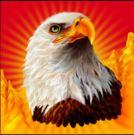 Symbol wild of Eagle Bucks free slot game