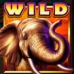 Wild symbol of Safari Spirit online free game