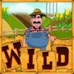 Wild symbol of casino slot game Farm Fair no registration