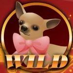 Wild symbol of Rich Girl casino slot game