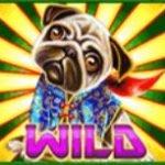 Wild symbol of free casino slot machine