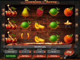 No download game Burning Cherry online