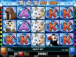 Slot machine Jolly Beluga Whales with no deposit
