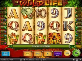 Casino game The Wild Life no deposit