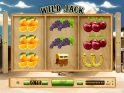 Wild Jack slot machine with no deposit