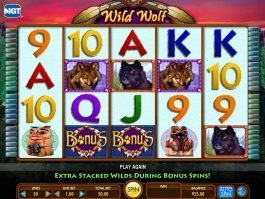 A picture of the slot machine Wild Wolf